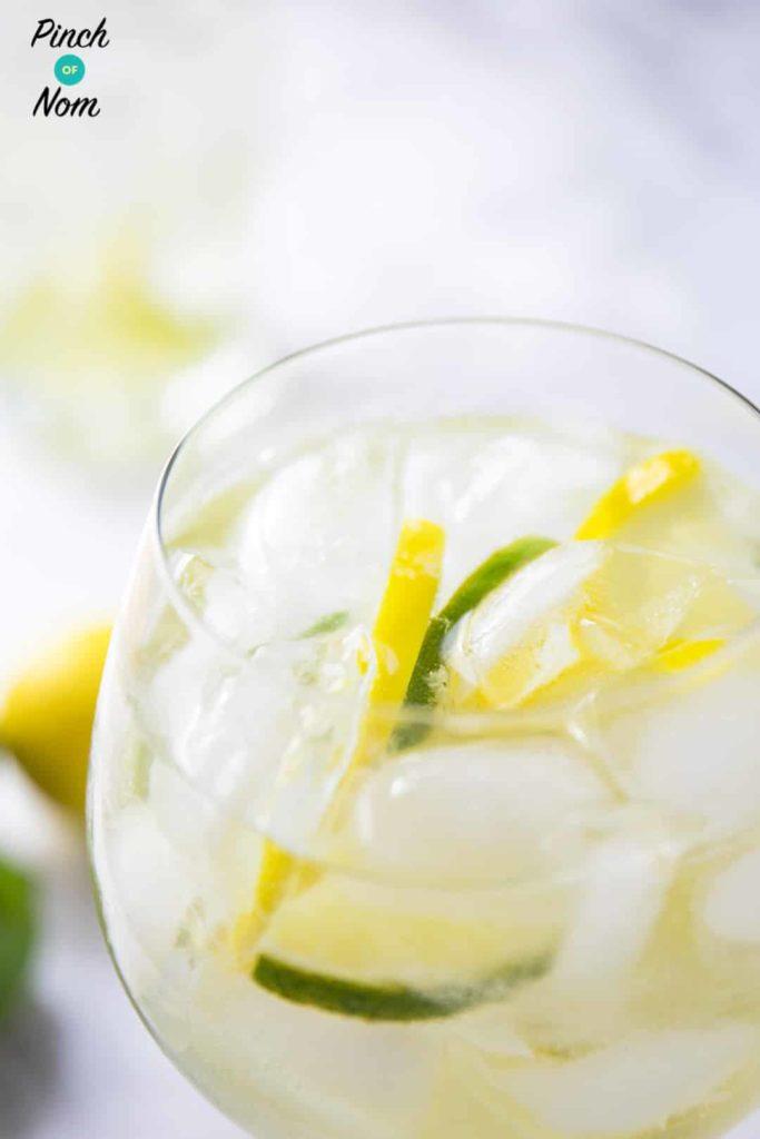 Elderflower Gin Fizz | Slimming & Weight Watchers Friendly