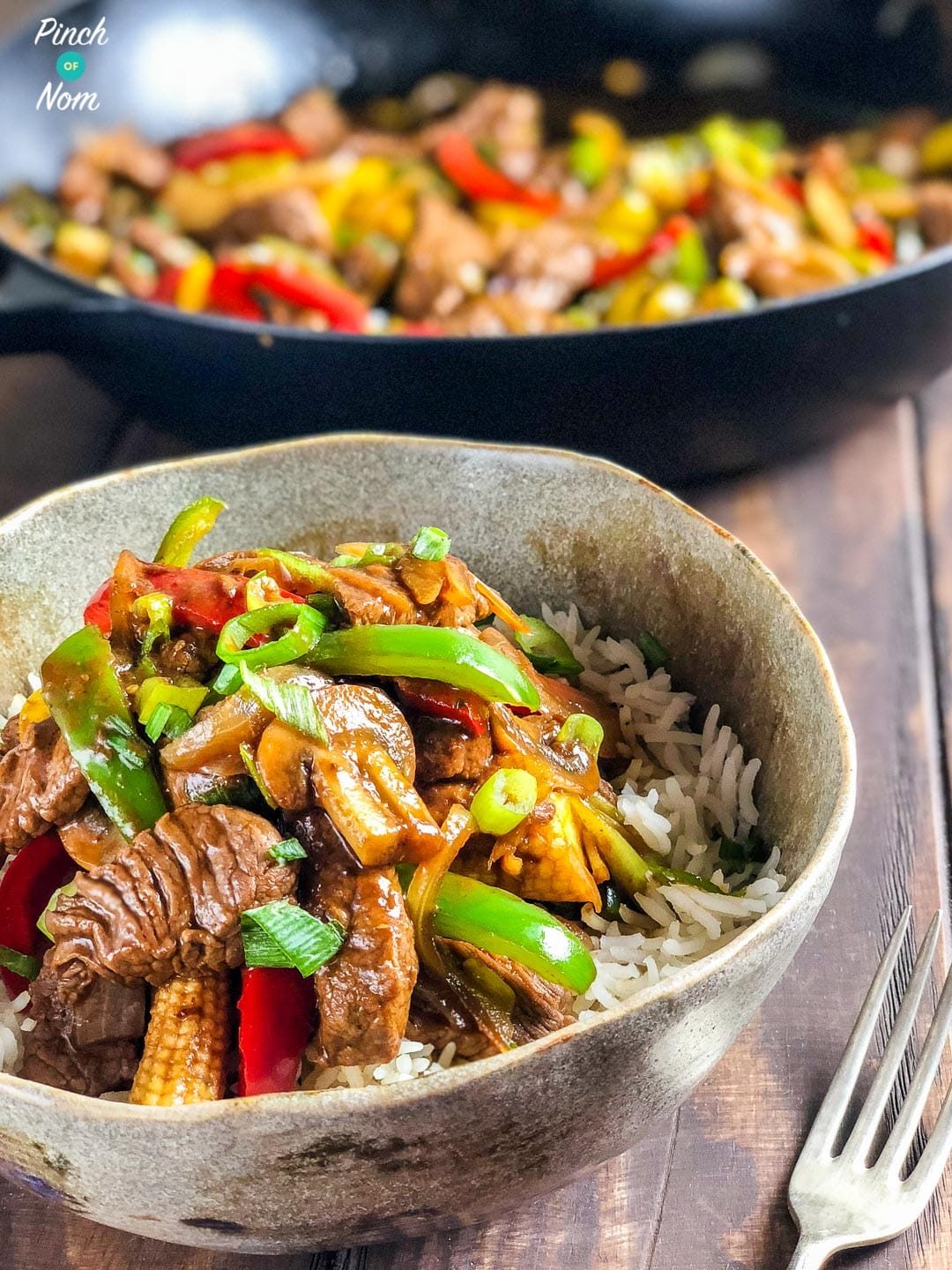 Stir-fried Beef with Ginger and Spring Onion - Slimming World-244