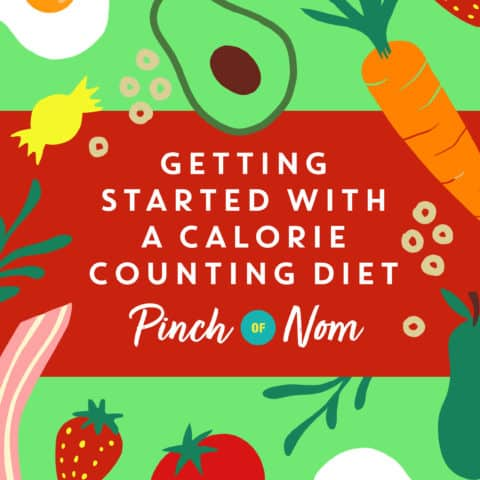 Getting Started with a Calorie Counting Diet pinchofnom.com
