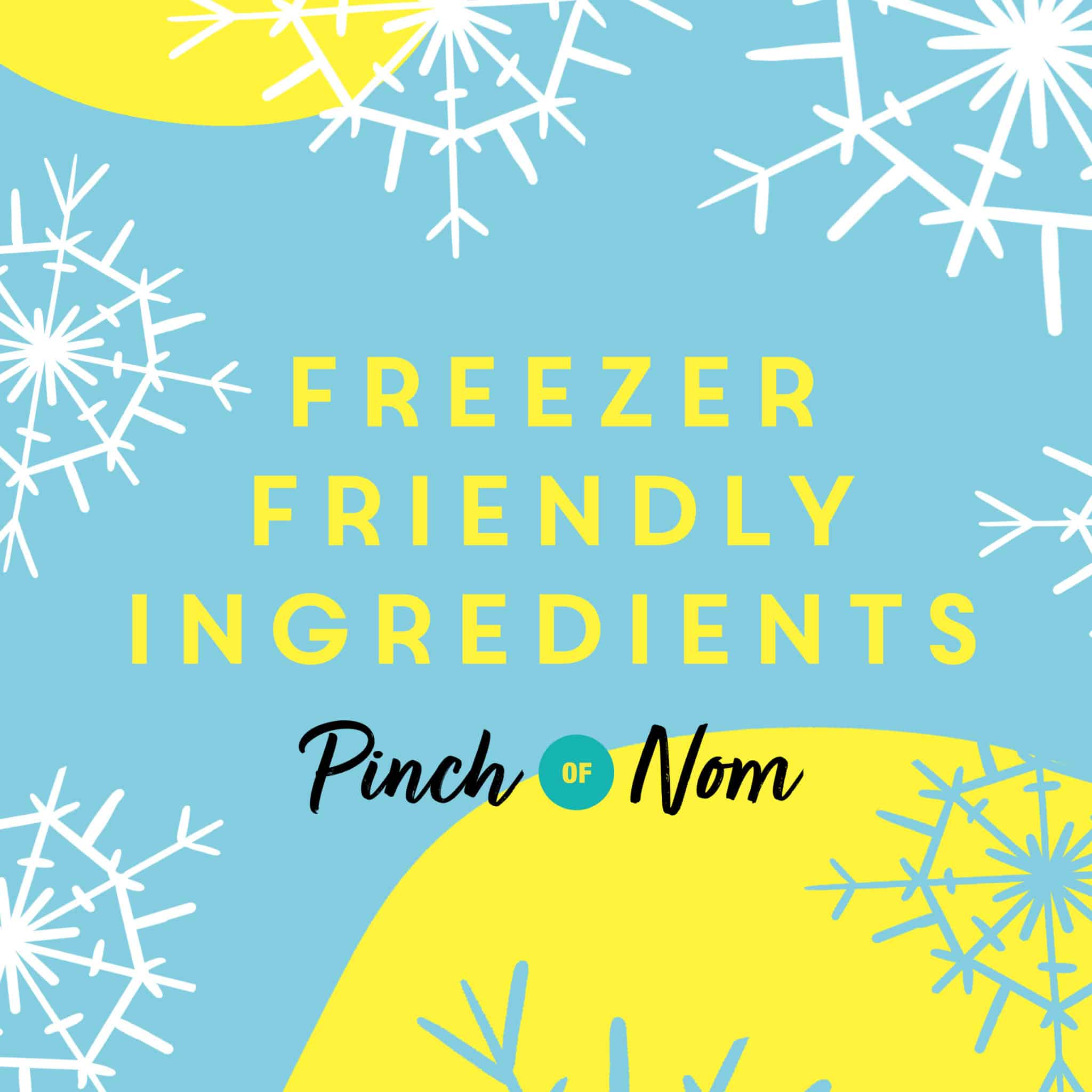 Foods You Didn't Know You Could Freeze pinchofnom.com
