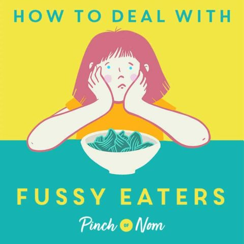How to Deal With Fussy Eaters pinchofnom.com